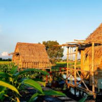 viet-mekong-farmstay3